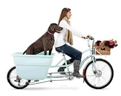 ร้านจักรยาน