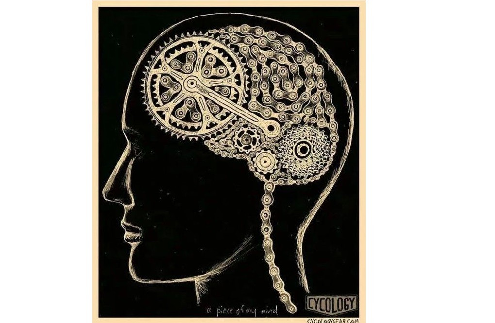cycling-and-brain-function